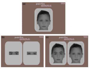 Let's face it, testen herkennen gezichtsonderdelen afzonderlijk en als onderdeel van geheel
