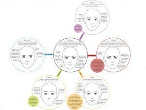 Welke gezichtsuitdrukkingen de emotie bepalen